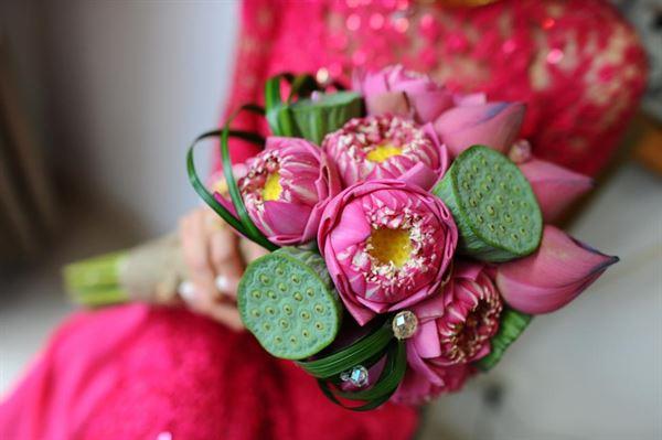 Hoa cưới sen