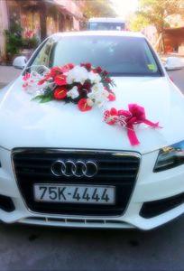 Xe du lịch Huế chuyên Xe cưới tại Tỉnh Thừa Thiên Huế - Marry.vn