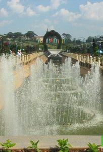 Đà Lạt Trip chuyên Trăng mật tại Lâm Đồng - Marry.vn