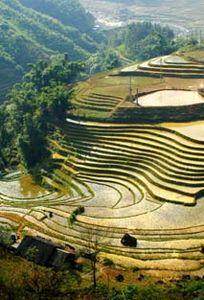 Du lịch Khám phá Việt chuyên Trăng mật tại Tỉnh Lào Cai - Marry.vn