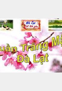 Du lịch Đà Lạt Hoa chuyên Trăng mật tại Lâm Đồng - Marry.vn