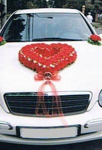Vận tải Diệu Linh chuyên Xe cưới tại  - Marry.vn