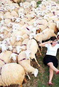 Phong Studio Phan Rang chuyên Chụp ảnh cưới tại Ninh Thuận - Marry.vn