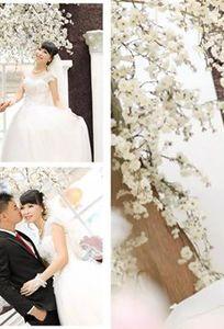 Studio Áo Cưới Jessian chuyên Chụp ảnh cưới tại Bắc Giang - Marry.vn