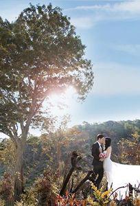 Hùng Studio Phan Rang chuyên Chụp ảnh cưới tại Ninh Thuận - Marry.vn