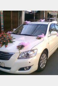 Thuê xe 365 Days chuyên Xe cưới tại Thành phố Hồ Chí Minh - Marry.vn