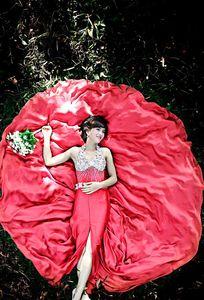 Áo Cưới Đức Tâm chuyên Chụp ảnh cưới tại  - Marry.vn