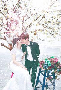 Thanh Trần Studio chuyên Chụp ảnh cưới tại Tỉnh Hải Dương - Marry.vn