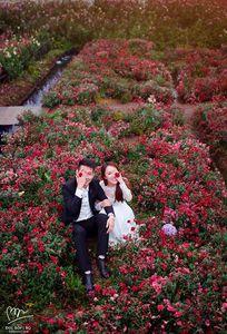 Bốp Studio chuyên Chụp ảnh cưới tại  - Marry.vn