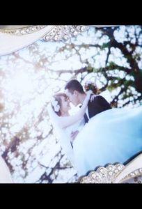 Mex Film Wedding chuyên Chụp ảnh cưới tại  - Marry.vn