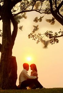 Áo cưới Thanh Hằng Vĩnh Phúc chuyên Chụp ảnh cưới tại Tỉnh Vĩnh Phúc - Marry.vn