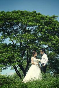 Sự kiện cưới Uyên Ương chuyên Wedding planner tại Hà Nội - Marry.vn
