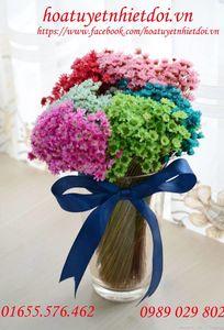 Hoa Tuyết Nhiệt đới - Snowy Flower chuyên Hoa cưới tại TP Hồ Chí Minh - Marry.vn