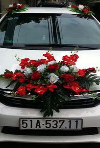 Xe cưới - Xe hoa Tấn Thùy chuyên Xe cưới tại TP Hồ Chí Minh - Marry.vn