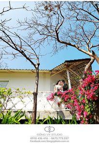 Đổng Vỹ Studio chuyên Chụp ảnh cưới tại Tỉnh Đồng Tháp - Marry.vn
