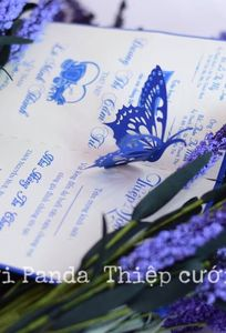 Thiệp cưới Panda chuyên Thiệp cưới tại Bến Tre - Marry.vn