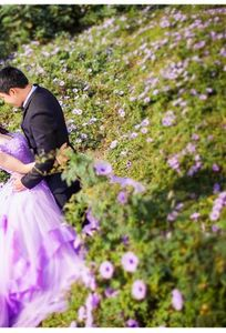 MỘC Studio Gia Lai chuyên Chụp ảnh cưới tại Tỉnh Gia Lai - Marry.vn