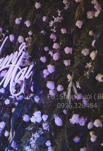 Shop Cưới ( Biên Hòa) chuyên Dịch vụ khác tại Đồng Nai - Marry.vn