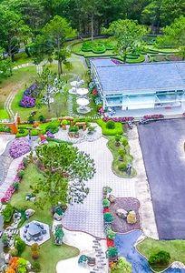 Đồi mộng mơ - TTC World chuyên Nhà hàng tiệc cưới tại Lâm Đồng - Marry.vn
