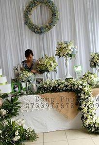 Đông Phương Wedding chuyên Wedding planner tại Tỉnh Tiền Giang - Marry.vn