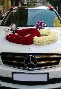 Công Ty TNHH DV TM Vận Tải Và Du Lịch YCAR chuyên Xe cưới tại Thành phố Hồ Chí Minh - Marry.vn