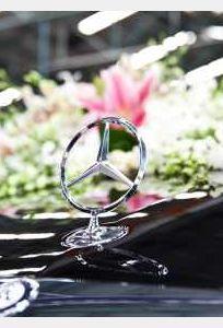Parrot Luxury Cars chuyên Xe cưới tại Đà Nẵng - Marry.vn