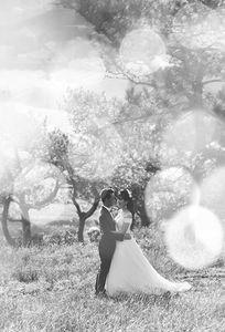 Rain Concept Studio chuyên Chụp ảnh cưới tại Tỉnh Ninh Bình - Marry.vn