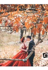 Kim Việt Xinh Studio chuyên Chụp ảnh cưới tại Tỉnh Yên Bái - Marry.vn
