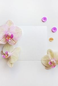 Thiệp cưới Ngọc Anh Hà Nội chuyên Thiệp cưới tại  - Marry.vn