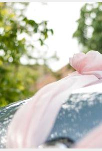 Xe Hoa Thảo Trang chuyên Xe cưới tại Đồng Nai - Marry.vn