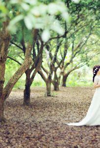 Nomo Studio chuyên Trang phục cưới tại Hà Nội - Marry.vn