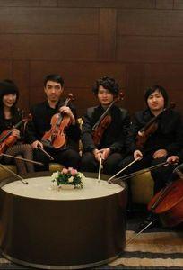 Ban Nhạc chuyên nghiệp chuyên Wedding planner tại  - Marry.vn
