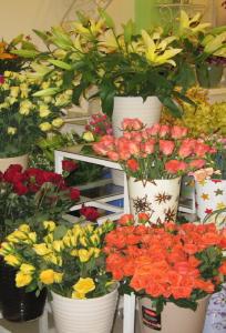 Shop hoa Thảo Nguyên chuyên Hoa cưới tại  - Marry.vn
