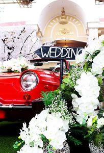 Tiệc cưới Vườn Cau