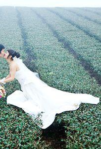 Studio Sơn Hà chuyên Chụp ảnh cưới tại Tỉnh Yên Bái - Marry.vn
