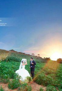 Baribu Studio chuyên Chụp ảnh cưới tại TP Hồ Chí Minh - Marry.vn