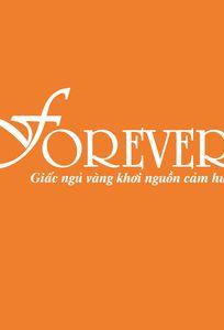 Chăn ga gối đệm Forever chuyên Nội thất cưới tại  - Marry.vn