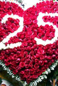 Shop hoa Lavender chuyên Hoa cưới tại Thành phố Hải Phòng - Marry.vn