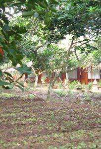 Tân Phong Resort chuyên Trăng mật tại Tiền Giang - Marry.vn