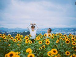 Album ảnh cưới - Đà Lạt ngập tràn hoa - Tony Wedding