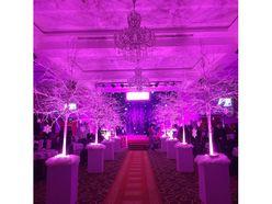 Gói tiệc Bạch kim - Trung tâm tiệc cưới hội nghị Saphire