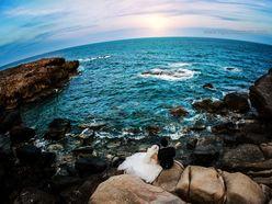 Thiên Đường Ảnh Cưới Biển - Studio Ngọc Huy
