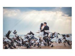 Chụp ảnh ngoại cảnh Đà Nẵng - T Wedding-Chụp Ảnh Cưới Đà Nẵng