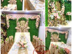 Swans Wedding - Swans Wedding