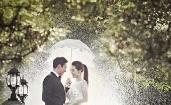 Tổ chức đám cưới mùa mưa, giải quyết nỗi lo thế nào? - Blog Marry