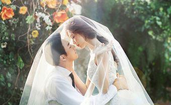 Tổng hợp những bài nhạc làm đĩa cưới hay nhất năm 2018 - Blog Marry