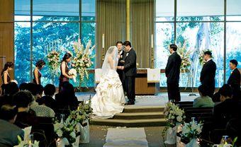 15 bài nhạc thánh ca lễ cưới trong nhà thờ hay và ý nghĩa - Blog Marry