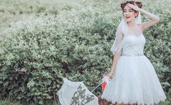 100+ Mẫu váy cưới đẹp nhất 2021 ! Kinh nghiệm chọn váy cưới từ A - Z - Blog Marry