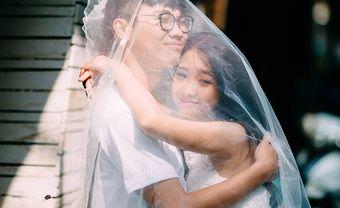 Chọn nhạc cưới từ những bản tình ca Việt đi cùng năm tháng - Blog Marry