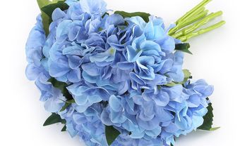 Hoa cưới và ý nghĩa của các loại hoa - Blog Marry